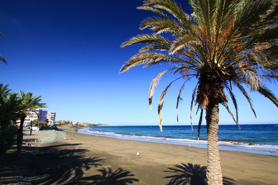 Apartment For Sale And For Rent In San Agustin Gran Canaria